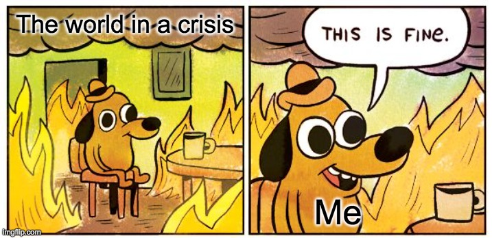 This Is Fine Meme |  The world in a crisis; Me | image tagged in memes,this is fine | made w/ Imgflip meme maker