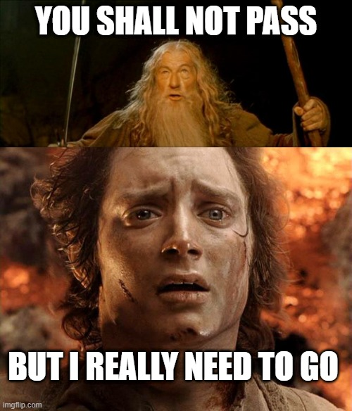 YOU SHALL NOT PASS; BUT I REALLY NEED TO GO | image tagged in gandalf you shall not pass,frodo its over its done | made w/ Imgflip meme maker