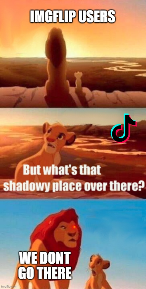 Simba Shadowy Place Meme |  IMGFLIP USERS; WE DONT GO THERE | image tagged in memes,simba shadowy place | made w/ Imgflip meme maker