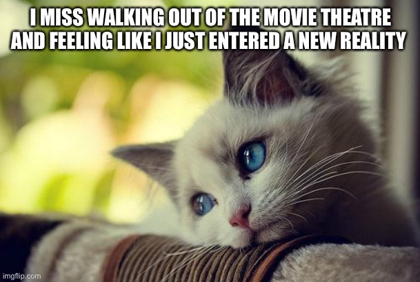 First World Problems Cat |  I MISS WALKING OUT OF THE MOVIE THEATRE AND FEELING LIKE I JUST ENTERED A NEW REALITY | image tagged in memes,first world problems cat | made w/ Imgflip meme maker