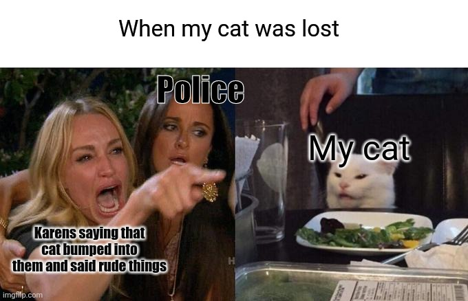 Woman Yelling At Cat |  When my cat was lost; Police; My cat; Karens saying that cat bumped into them and said rude things | image tagged in memes,woman yelling at cat | made w/ Imgflip meme maker