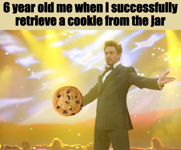 Tony Stark success |  6 year old me when I successfully retrieve a cookie from the jar | image tagged in tony stark success,memes,cookie,6 year old me when | made w/ Imgflip meme maker
