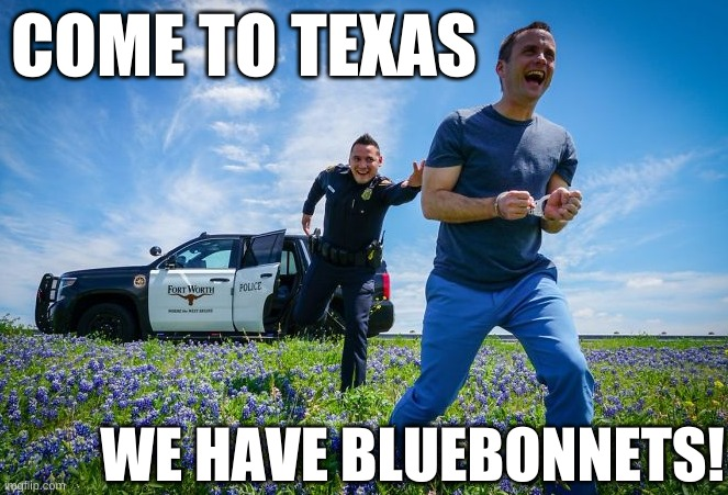 Come to Texas - We have Bluebonnets! |  COME TO TEXAS; WE HAVE BLUEBONNETS! | image tagged in fort worth texas bluebonnets funny,police,fort worth,funny,humor,bluebonnets | made w/ Imgflip meme maker