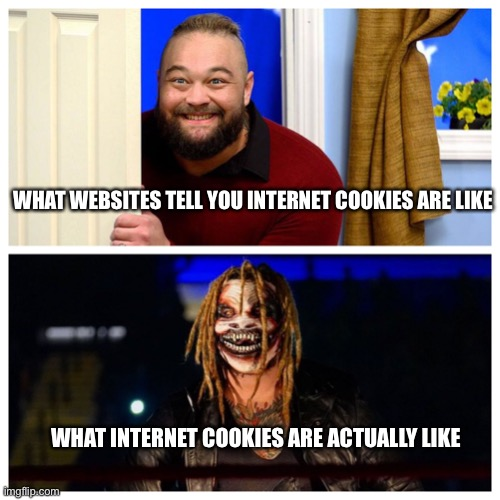 no cookies. do your research. they bad :) |  WHAT WEBSITES TELL YOU INTERNET COOKIES ARE LIKE; WHAT INTERNET COOKIES ARE ACTUALLY LIKE | image tagged in bray good vs bad | made w/ Imgflip meme maker