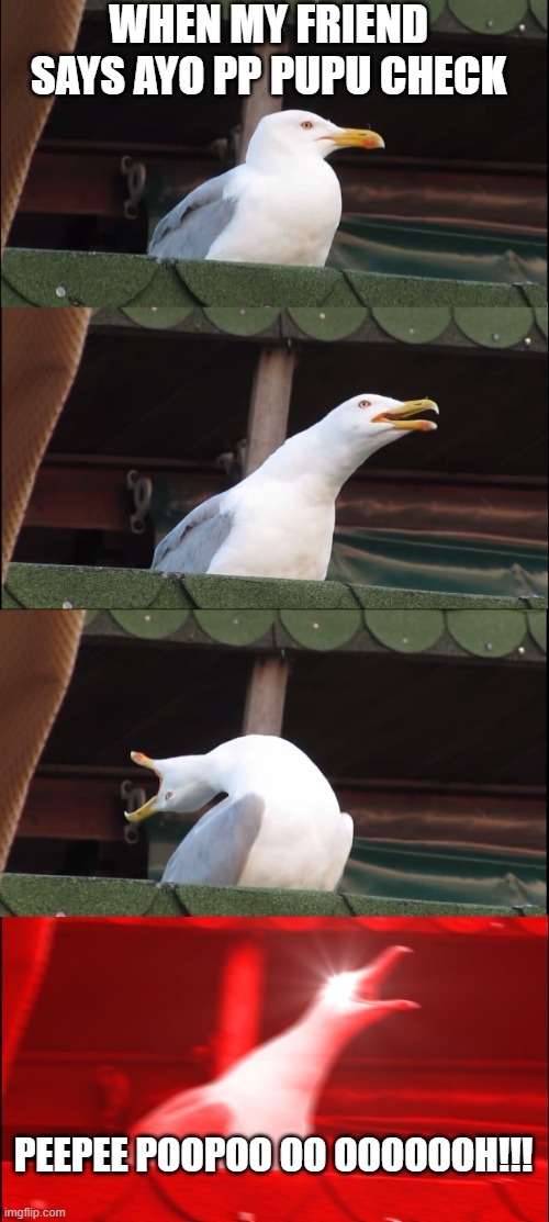 pipipupu |  WHEN MY FRIEND SAYS AYO PP PUPU CHECK; PEEPEE POOPOO OO OOOOOOH!!! | image tagged in memes,inhaling seagull | made w/ Imgflip meme maker