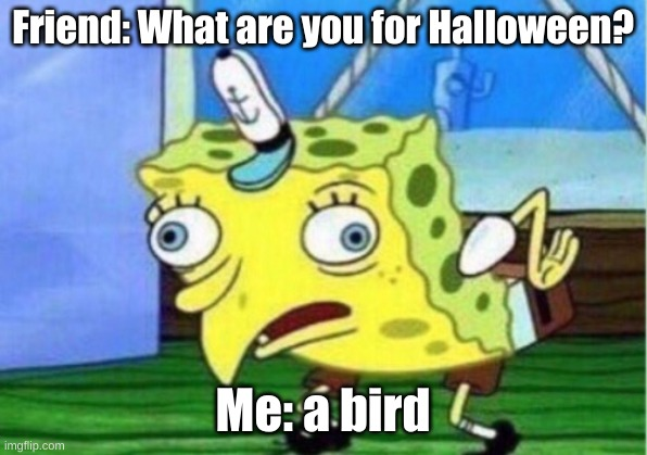 Sponge Bob Haloweeen |  Friend: What are you for Halloween? Me: a bird | image tagged in memes,mocking spongebob | made w/ Imgflip meme maker