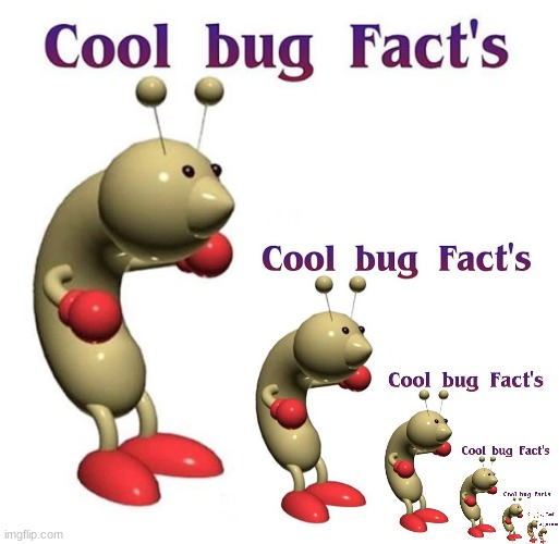 Cool Bug Fact's | image tagged in cool bug facts's | made w/ Imgflip meme maker
