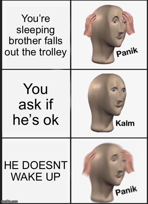 HELLLLLP |  You're sleeping brother falls out the trolley; You ask if he's ok; HE DOESNT WAKE UP | image tagged in memes,panik kalm panik | made w/ Imgflip meme maker
