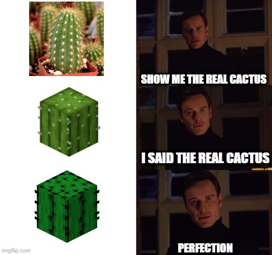 Nobody: Minecraft veterans: |  SHOW ME THE REAL CACTUS; I SAID THE REAL CACTUS; PERFECTION | image tagged in perfection,minecraft,cactus | made w/ Imgflip meme maker
