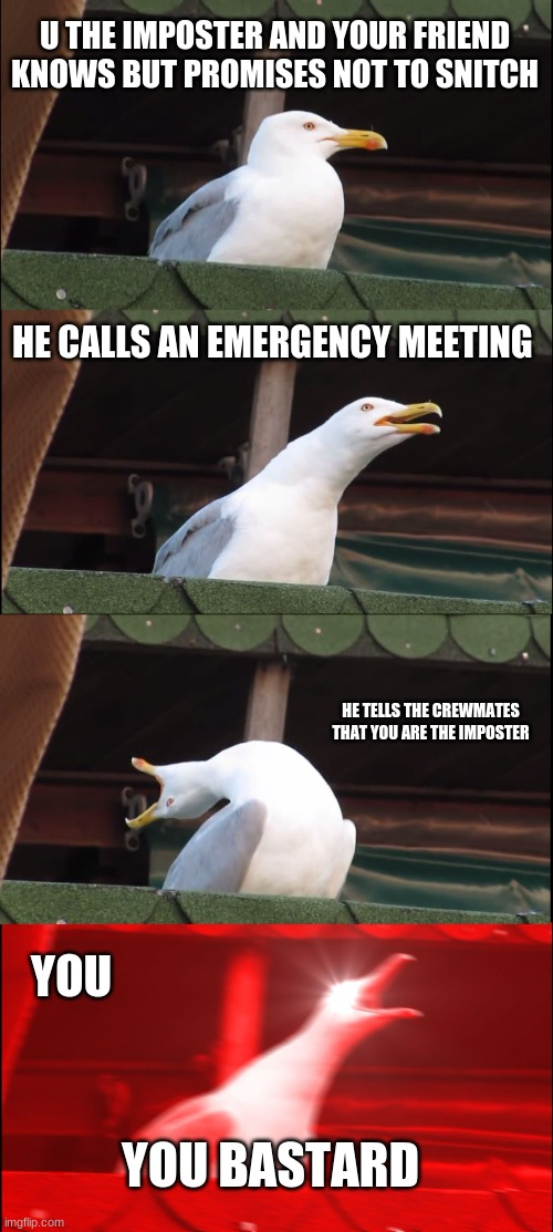 Inhaling Seagull Meme |  U THE IMPOSTER AND YOUR FRIEND KNOWS BUT PROMISES NOT TO SNITCH; HE CALLS AN EMERGENCY MEETING; HE TELLS THE CREWMATES THAT YOU ARE THE IMPOSTER; YOU; YOU BASTARD | image tagged in memes,inhaling seagull | made w/ Imgflip meme maker