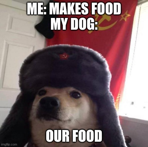 Russian Doge |  ME: MAKES FOOD MY DOG:; OUR FOOD | image tagged in russian doge,ussr,mother russia,trololol | made w/ Imgflip meme maker