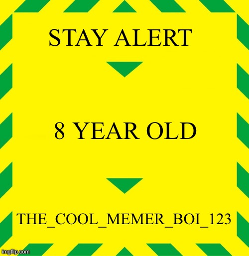 Stay Alert |  STAY ALERT; 8 YEAR OLD; THE_COOL_MEMER_BOI_123 | image tagged in stay alert | made w/ Imgflip meme maker
