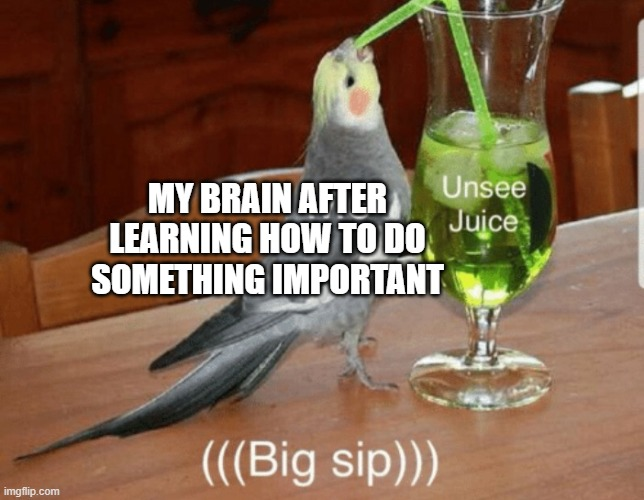 haha |  MY BRAIN AFTER LEARNING HOW TO DO SOMETHING IMPORTANT | image tagged in unsee juice | made w/ Imgflip meme maker