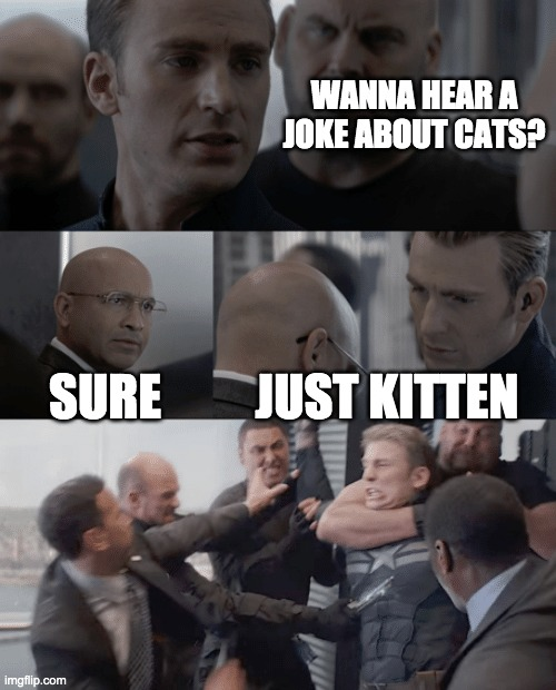 i hate that joke |  WANNA HEAR A JOKE ABOUT CATS? SURE; JUST KITTEN | image tagged in captain america elevator | made w/ Imgflip meme maker