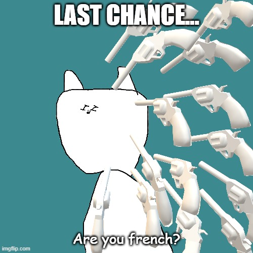 FRENCH |  LAST CHANCE... Are you french? | image tagged in upvote | made w/ Imgflip meme maker