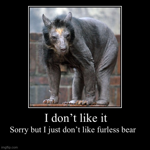 I don't like it | Sorry but I just don't like furless bear | image tagged in funny,demotivationals | made w/ Imgflip demotivational maker