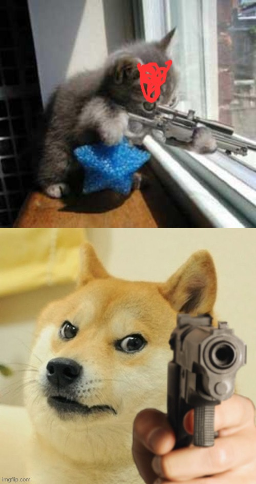 image tagged in cat sniper,gun doge | made w/ Imgflip meme maker