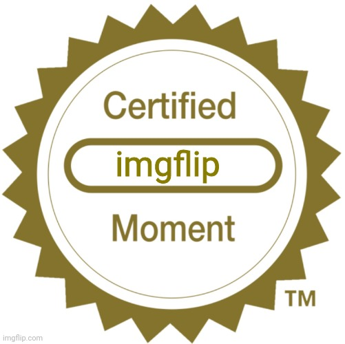 Certified Moment | imgflip | image tagged in certified moment | made w/ Imgflip meme maker