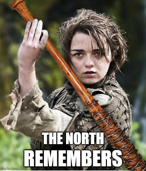 The North Remembers |  THE NORTH; REMEMBERS | image tagged in the north remembers,twduniverse,got,arya stark,lucille,negan and lucille | made w/ Imgflip meme maker