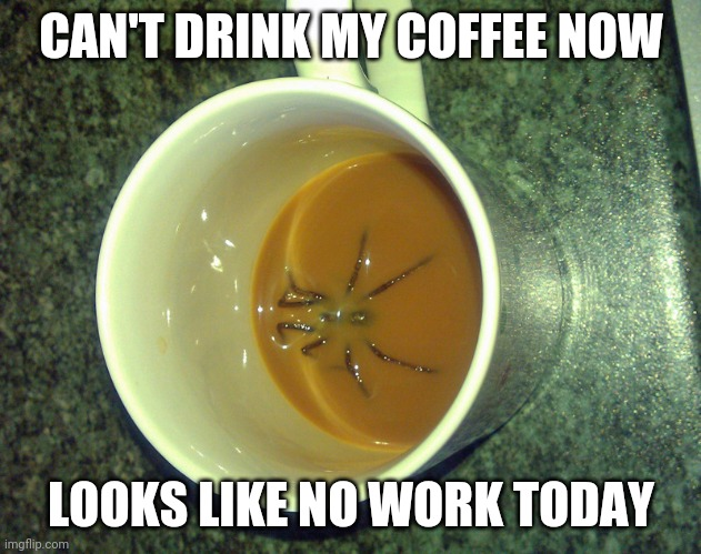 GONNA HAVE TO SKIP |  CAN'T DRINK MY COFFEE NOW; LOOKS LIKE NO WORK TODAY | image tagged in work,spider,coffee | made w/ Imgflip meme maker