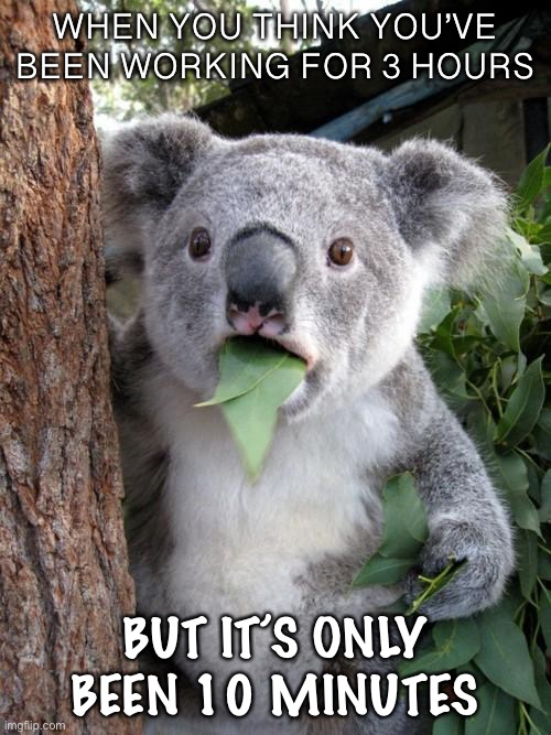 Personal experience |  WHEN YOU THINK YOU'VE BEEN WORKING FOR 3 HOURS; BUT IT'S ONLY BEEN 10 MINUTES | image tagged in memes,surprised koala | made w/ Imgflip meme maker