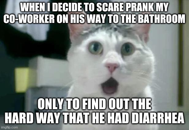 Scared the $#!+ outta him...for real. |  WHEN I DECIDE TO SCARE PRANK MY CO-WORKER ON HIS WAY TO THE BATHROOM; ONLY TO FIND OUT THE HARD WAY THAT HE HAD DIARRHEA | image tagged in memes,omg cat,coworker,prank,gone wrong,not a true story | made w/ Imgflip meme maker