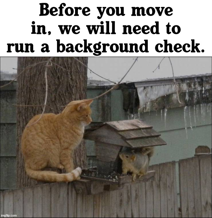 Moving on |  Before you move in, we will need to run a background check. | image tagged in moving,home,memes | made w/ Imgflip meme maker