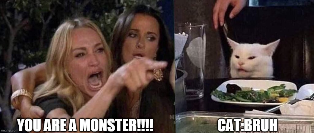 hahahaha |  YOU ARE A MONSTER!!!! CAT:BRUH | image tagged in woman yelling at cat,meow,cat lover | made w/ Imgflip meme maker