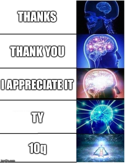 Expanding Brain 5 Panel |  THANKS; THANK YOU; I APPRECIATE IT; TY; 10q | image tagged in expanding brain 5 panel | made w/ Imgflip meme maker