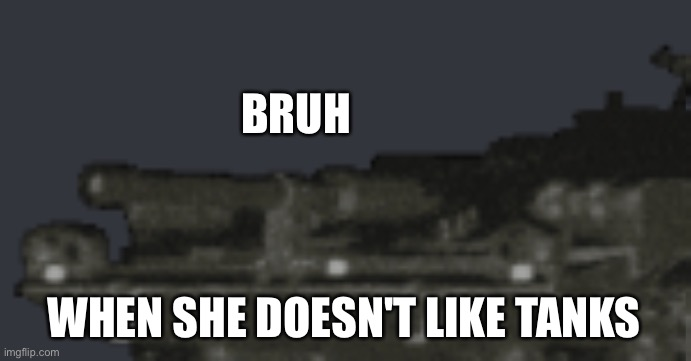 Bruh |  BRUH; WHEN SHE DOESN'T LIKE TANKS | image tagged in strv 103 bruh | made w/ Imgflip meme maker