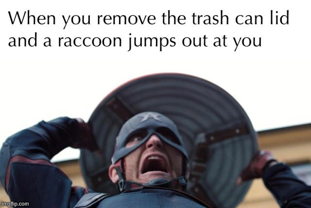 AAAHHH!! | image tagged in funny,memes,fun,raccoon,captain america,marvel | made w/ Imgflip meme maker