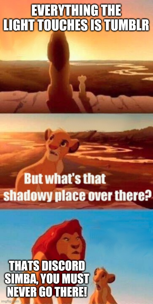 Simba Shadowy Place Meme |  EVERYTHING THE LIGHT TOUCHES IS TUMBLR; THATS DISCORD SIMBA, YOU MUST NEVER GO THERE! | image tagged in memes,simba shadowy place,discord,tumblr | made w/ Imgflip meme maker