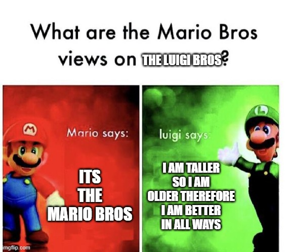 Mario Bros Views |  THE LUIGI BROS; ITS THE MARIO BROS; I AM TALLER SO I AM OLDER THEREFORE I AM BETTER IN ALL WAYS | image tagged in mario bros views | made w/ Imgflip meme maker
