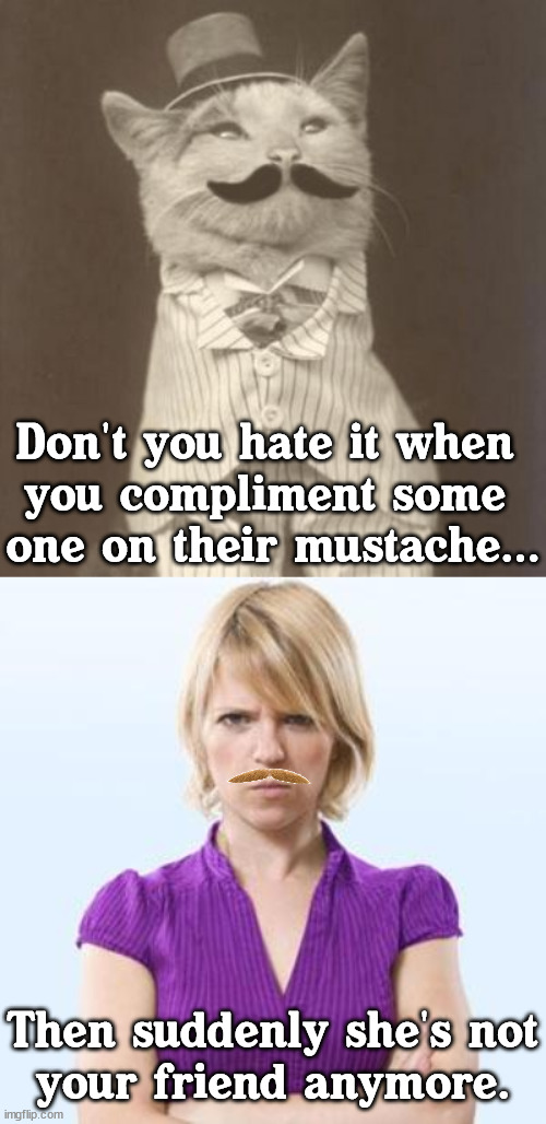 Better yet, give her mustache wax. |  Don't you hate it when  you compliment some  one on their mustache... Then suddenly she's not your friend anymore. | image tagged in moustache cat posh,angry woman,i have failed you | made w/ Imgflip meme maker