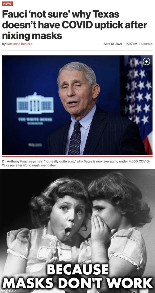 Fauci - The Expert |  BECAUSE MASKS DON'T WORK | image tagged in covid-19,coronavirus,masks,lockdown | made w/ Imgflip meme maker