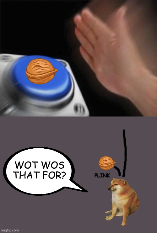 blank NUT button |  WOT WOS THAT FOR? PLINK | image tagged in memes,blank nut button | made w/ Imgflip meme maker