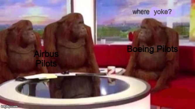 boeing pilots be like: |  yoke? Boeing Pilots; Airbus Pilots | image tagged in where banana blank | made w/ Imgflip meme maker