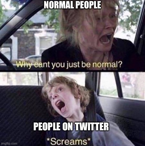 Why Can't You Just Be Normal |  NORMAL PEOPLE; PEOPLE ON TWITTER | image tagged in why can't you just be normal,twitter,cringe,2021,why cant you just be normal,normal | made w/ Imgflip meme maker