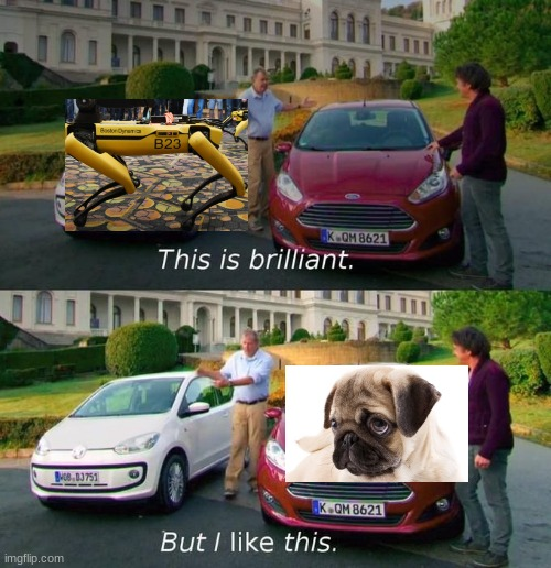 ngl real dogs are better than the fakes | image tagged in this is brilliant but i like this | made w/ Imgflip meme maker