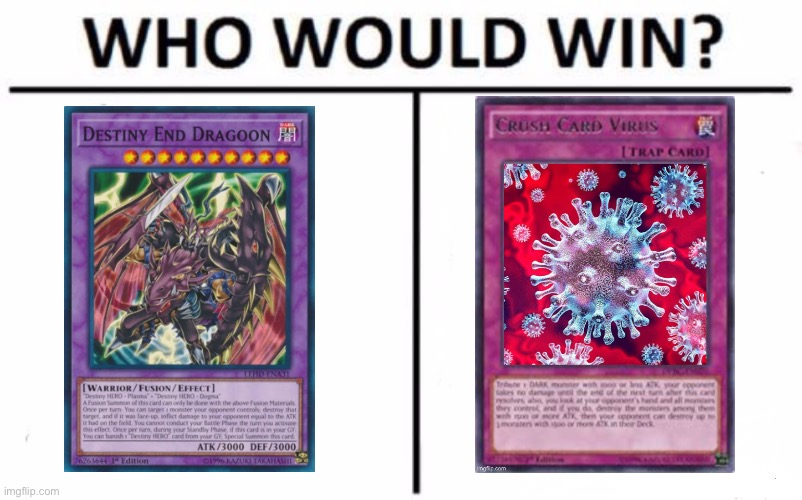 Not looking for a serious answer but okay. | image tagged in memes,who would win | made w/ Imgflip meme maker