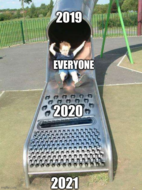 Credits to SophiaWilliams3 for this meme idea |  2019; EVERYONE; 2020; 2021 | image tagged in cheese grater slide,memes | made w/ Imgflip meme maker