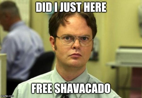 Dwight Schrute Meme |  DID I JUST HERE; FREE SHAVACADO | image tagged in memes,dwight schrute | made w/ Imgflip meme maker