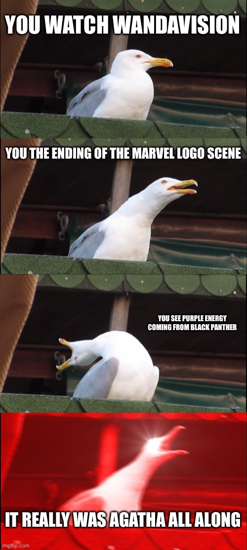Episode 7-9 spoilers |  YOU WATCH WANDAVISION; YOU THE ENDING OF THE MARVEL LOGO SCENE; YOU SEE PURPLE ENERGY COMING FROM BLACK PANTHER; IT REALLY WAS AGATHA ALL ALONG | image tagged in memes,inhaling seagull | made w/ Imgflip meme maker