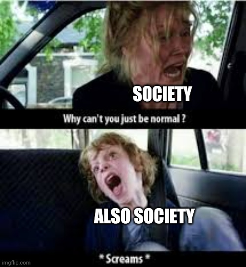 Why cant you just be normal? |  SOCIETY; ALSO SOCIETY | image tagged in why cant you just be normal | made w/ Imgflip meme maker