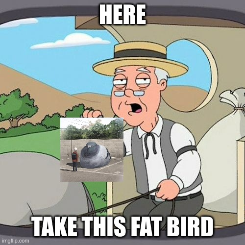 a fat bird |  HERE; TAKE THIS FAT BIRD | image tagged in memes,pepperidge farm remembers | made w/ Imgflip meme maker