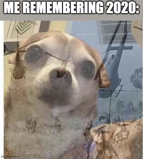 PTSD Chihuahua | ME REMEMBERING 2020: | image tagged in ptsd chihuahua | made w/ Imgflip meme maker