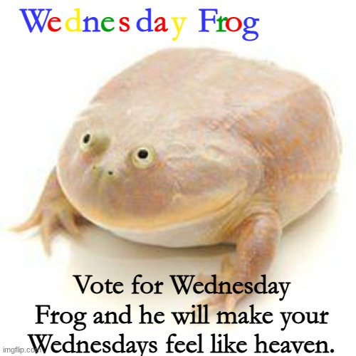 Wednesday Frog (happy wednesday) |  W; e; d; n; e; s; d; a; y; F; r; o; g; Vote for Wednesday Frog and he will make your Wednesdays feel like heaven. | image tagged in wednesday frog blank | made w/ Imgflip meme maker