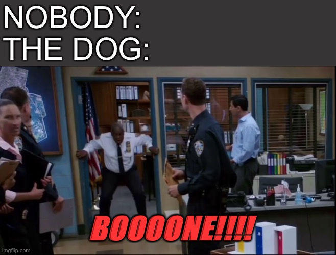 Captain Holt BONE |  NOBODY: THE DOG:; BOOOONE!!!! | image tagged in captain holt bone,dog,holt,captain holt | made w/ Imgflip meme maker