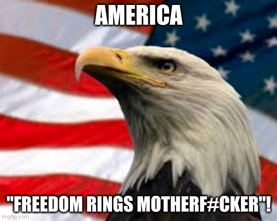 "Freedom rings! |  AMERICA; ""FREEDOM RINGS MOTHERF#CKER""! 