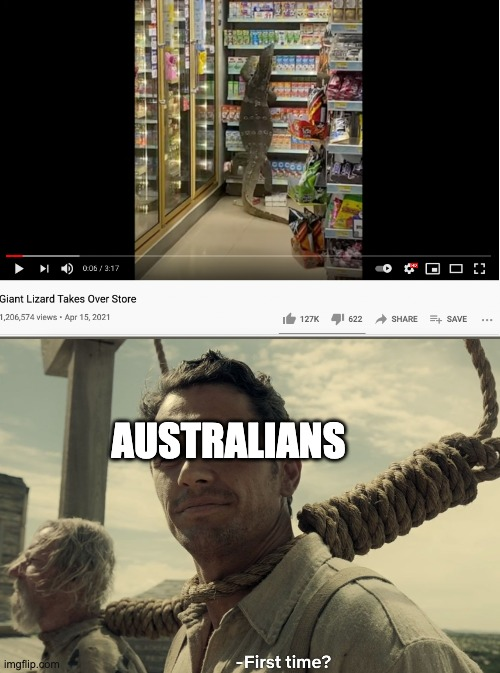 AUSTRALIANS | image tagged in lizard,first time | made w/ Imgflip meme maker